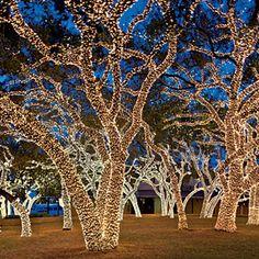 Austin - Johnson City - San Antonio scenic christmas light road trip / Southern Living