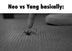 Neo vs Yang basically: GIF