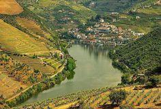 Terras do Douro Douro Portugal, Tours, Spain And Portugal, Travel Destinations, River, World, Places, Outdoor, Madureira
