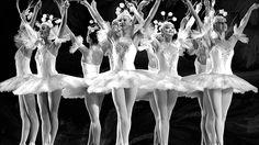 A Bailarina =Quando estou num palco / Entre luzes a brilhar, / Eu me sinto um pássaro / A voar, voar, voar. Toda bailarina pela vida vai levar / Sua doce sina de dançar, dançar, dançar... A BAILARINA (Toquinho e Mutinho) Um, dois, três e quatro, / Dobro a perna e dou um salto, / Viro e me viro ao revés E se eu caio conto até dez. Depois dessa lenga-lenga toda / Recomeça / Puxa vida, ora essa! / Vivo na ponta dos pés. Quando sou criança / Viro orgulho da família: / Giro em meia ponta /...