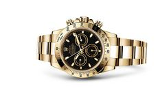 NEWEST Model: 116503 the Cosmograph Daytona watch in Yellow Rolesor - combination of steel and 18 ct yellow gold on the Official Rolex Website. Rolex Daytona Gold, Rolex Daytona Watch, Rolex Cosmograph Daytona, Lux Watches, Watches For Men, Rolex Boutique, Rolex Watch Price, Swiss Luxury Watches, New Rolex