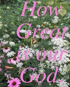Vintage Grace- Visual Faith - VRSLY