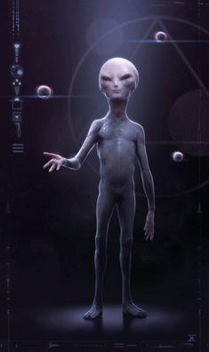 """Greys (também referenciados por """"Roswell Greys"""", """"Greys"""" ou """"Grays"""") são supostos seres extraterrestres que recebem este nome em função d..."""