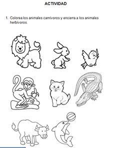 Fotos de animales herbívoros para imprimir - Imagui