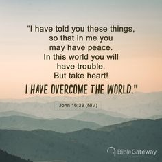 """I have told you these things, so that in me you may have peace. In this world you will have trouble. But take heart! I have overcome the world. Favorite Bible Verses, Bible Verses Quotes, Faith Quotes, Favorite Quotes, Niv Bible, Bible Scriptures, Bible Verse Search, John 16 33, Overcome The World"