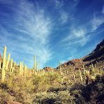 Tucson, Arizona (Photo via Instagram by @t_rat_max - Click on the pin for places to stay, things to do and more.)