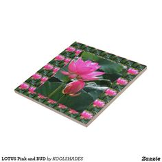 LOTUS Pink and BUD Ceramic Tile