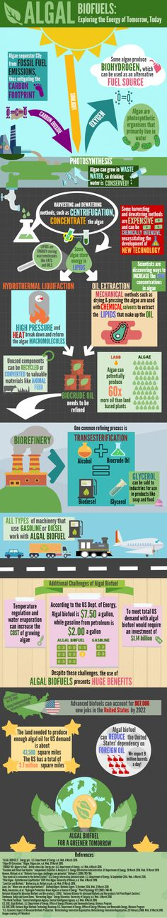 2016 Bioenergizeme Infographic Challenge: Algae Biofuels, Exploring the Energy of Tomorrow Today