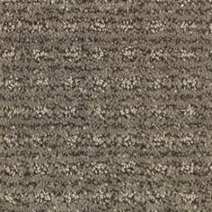 Stainmaster Petprotect Belle Lucky Berber Indoor Carpet