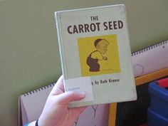 Activities to go with The Carrot Seed - B4FIAR