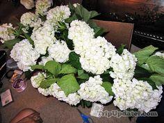Sam& Club Bulk Wedding Flowers – Hydrangeas, White Roses, and . Sams Club Flowers, Bulk Wedding Flowers, White Roses, Garden Inspiration, Centerpieces, Sam's Club, Hydrangeas, Diy Ideas, Wedding Ideas
