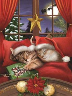 All A Merry Christmas 500 Pc Jigsaw Puzzle By Sunsout - Christmas Puzzle,,Christmas Day Products,Gifts Products Christmas Jigsaw Puzzles, Christmas Puzzle, Christmas Kitten, Christmas Animals, Christmas Scenes, Christmas Time, Xmas, Mery Crismas, Image Chat