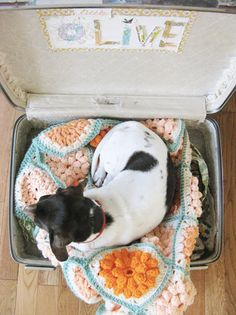 Using a vintage suitcase as a dog bed - what an amazing idea!