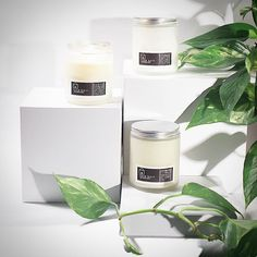 Our candle collection will officially debut tomorrow. Filling our space with the indulgent aromatics of pure essential oil fragrance puts a huge smile on our faces and we know you will definitely agree.  #candles #essentialoils #nature #littlebarnapothecary #beautiful #warm #glow by littlebarnapothecary