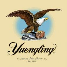 Yuengling draft, and bottles.