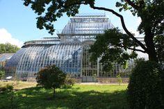 Afbeeldingsresultaat voor green house garden