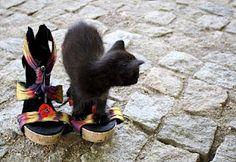 Sandals & Yoga