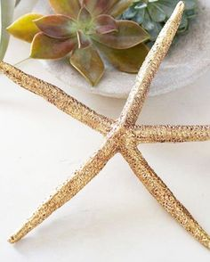 I love this gold starfish from @potterybarnaus perfect for a coastal Christmas.