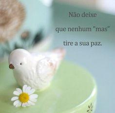 http://instagram.com/papeletudo