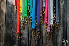 Any Color Waterproof Dog Leash