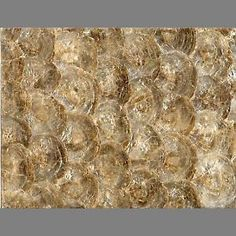 Brown Circular Pearlescent Shell tiled wall covering