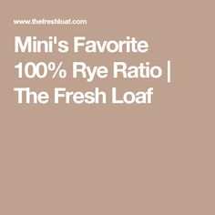 Mini's Favorite 100% Rye Ratio   The Fresh Loaf