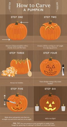 Looking for some pumpkin carving ideas? Learn how to pick the perfect pumpkin and how to turn a pumpkin into a Jack O' Lantern with this guide! Cute Pumpkin Carving, Halloween Pumpkin Carving Stencils, Halloween Pumpkin Designs, Cute Halloween Decorations, Halloween Pumpkins, Halloween Diy, Pumpkin Painting, Pumpkin Crafts, Pumpkin Pumpkin