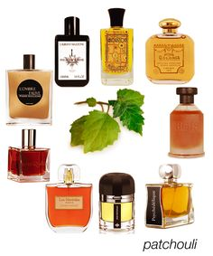 Favorite patchoulis - from green to creamy to smoky: Horizon, Santa Maria Novella Patchouli, Real Patchouly, Pyschedelique, Patchouli Precieux, Gothic I EDP, L'Ombre Fauve, and Patchouli Boheme. #niche #perfume #luckyscent