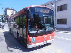Sorrento Town Bus