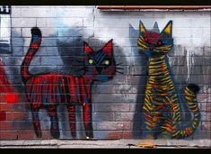 Two magical streetcats in the neighbourhood | Flickr - Photo Sharing!