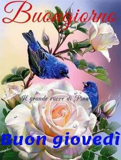 Buon Giovedì Immagini For Android Apk Download