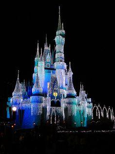 Disney World Cinderella Castle Night