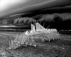 BEWEGING - Theo Jansen - 'Strandbeesten': sculpturen die bewegen door de wind.