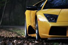 Yellow lambo! saw one this morning and about tripped on my own feet while out for a run