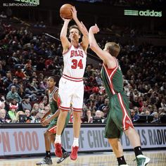 Mike Dunleavy - Chicago Bulls