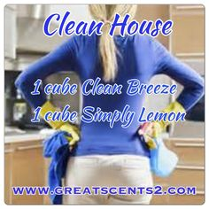 Clean House Scentsy Recipe https://simplydevine.scentsy.us/Scentsy/Home https://www.facebook.com/SimplyDevineScentsy