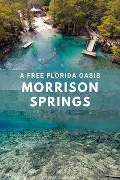 Old Florida, Florida Travel, Travel Usa, Florida Camping, Tampa Florida, Clearwater Florida, Naples Florida, Travel Tips, Beach Travel