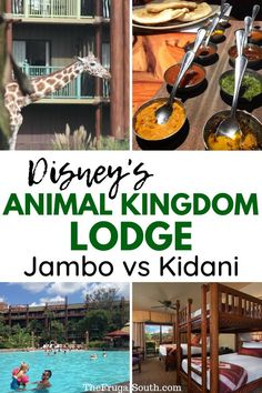 How to decide where to stay at Disney Animal Kingdom Lodge! There are many differences between Jambo House and Kidani Village - learn all about them in this post! Disney deluxe resort and Disney World resort. #animalkingdomlodge #disneyworlddeluxeresort