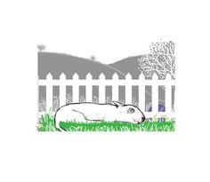 Bull Terrier Art Print Sleeping Dog in Grass