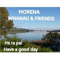 Waitangi Day, 8 Week Challenge, Little Duck, Reading Quotes, Abc News, Child Development, Ducks, Kiwi, Ranger