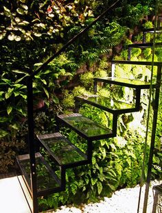 Glass stairs over green garden with vertical wall garden