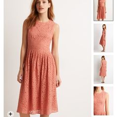 Beautiful knee length lace pattern dress Really pretty Rose colored dress (it's more of an orangey rose color) with lace patterned design. Hidden zipper in the back. New with all labels and tags still attached. Forever 21 Dresses