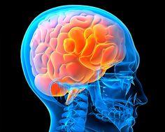 """A Programação Neurolinguística é vista como sendo constituída por um conjunto de técnicas criadas a partir do estudo de como funcionam as pessoas consideradas como """"excelentes"""" numa determinada área."""