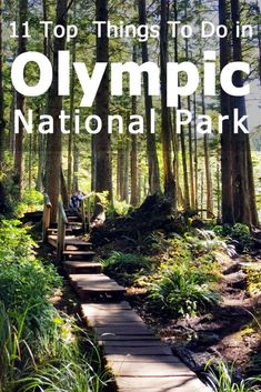 Space Guide 11 Top things to do in Olympic National Park (A Visitor's Guide) - Trip Memos - See what makes Olympic one of our favorite US national parks and get our list of favorite things to do and see in this hugely diverse and beautiful place. Olympic National Forest, Us National Parks, Yellowstone National Park, Glacier National Park Bc, Olympic National Park Camping, North Cascades National Park, Mount Rainier National Park, Nationalparks Usa, Escalante National Monument