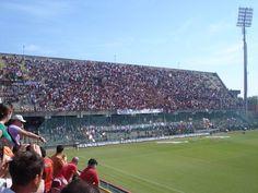 Estadio Arechi. Situado en la ciudad de Salerno, con una capacidad para 37.500 personas, es propiedad comunal y casa de la UD Salernitana 1919