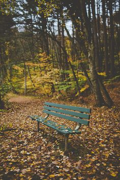 local park in the fall Sweet November, Bench Swing, Autumn Illustration, Local Parks, Best Seasons, Wish You Are Here, Hello Autumn, Warm Colors, Fall Halloween