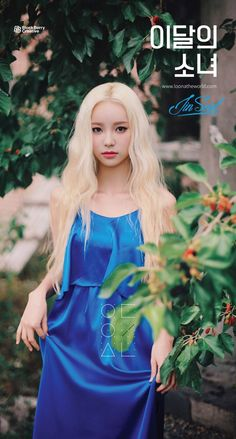 LOONA - JinSoul 진솔 (Jung JinSol 정진솔) 'Girl Of The Month' is represented by colour Royal Blue and the Fish Kpop Girl Groups, Korean Girl Groups, Kpop Girls, Singing In The Rain, Olivia Hye, K Idols, South Korean Girls, Teaser, Asian Beauty