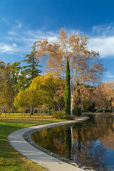 Fall colors show in trees around the pond at William Land Park in Sacramento.