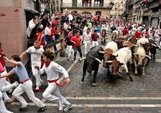 Celebrations: Bull running is a well known celebration for Spain. The length is about half a mile and it only lasts two to four minutes. The streets are lined with barricades so the bulls do not escape. Thousands of people enter the run and try to stay ahead of the animals. The goal is to stay ahead of the animals for a few seconds and then move out of the way quickly. The running of the bulls is highly dangerous. People risk being trampled and gored.