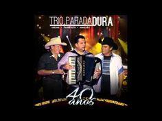 O Trio do Brasil   40 Anos 2013 CD COMPLETO